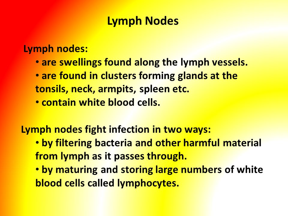 Lymph Nodes Lymph nodes: are swellings found along the lymph vessels.