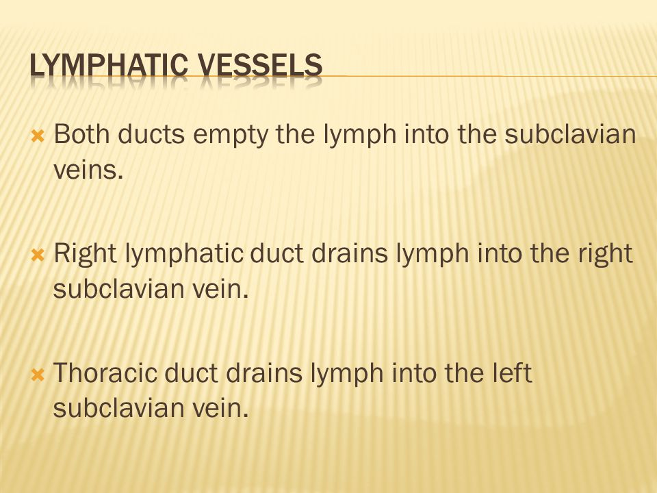  Both ducts empty the lymph into the subclavian veins.