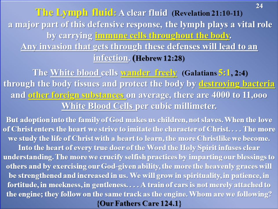 The Lymph fluid : A clear fluid The Lymph fluid : A clear fluid (Revelation 21:10-11) a major part of this defensive response, the lymph plays a vital role by carrying immune cells throughout the body.