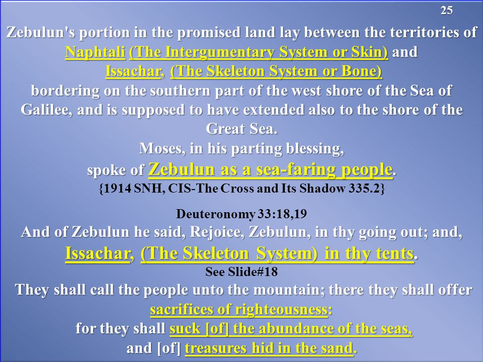 Zebulun s portion in the promised land lay between the territories of Naphtali (The Intergumentary System or Skin) and Issachar, (The Skeleton System or Bone) Issachar, (The Skeleton System or Bone) bordering on the southern part of the west shore of the Sea of Galilee, and is supposed to have extended also to the shore of the Great Sea.