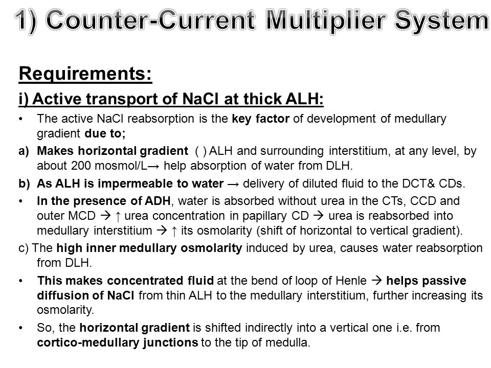 Requirements: i) Active transport of NaCl at thick ALH: The active NaCl reabsorption is the key factor of development of medullary gradient due to; a)Makes horizontal gradient ( ) ALH and surrounding interstitium, at any level, by about 200 mosmol/L→ help absorption of water from DLH.