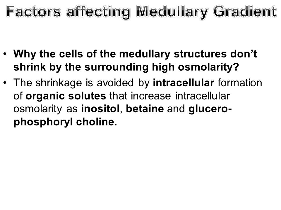 Why the cells of the medullary structures don't shrink by the surrounding high osmolarity.