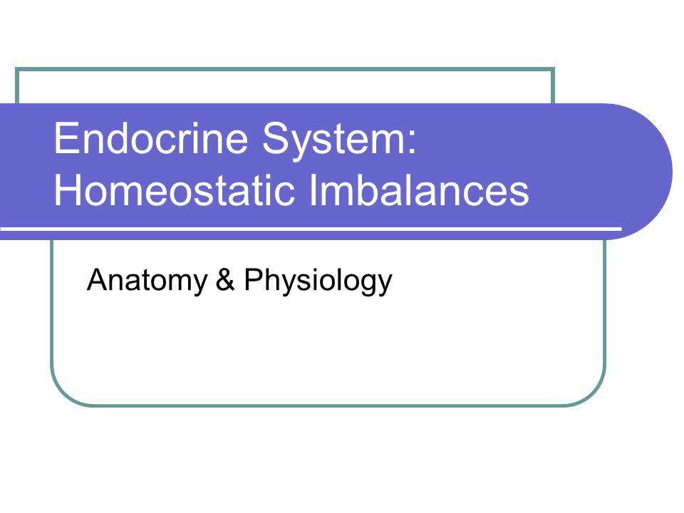 Endocrine System: Homeostatic Imbalances Anatomy & Physiology. - ppt ...