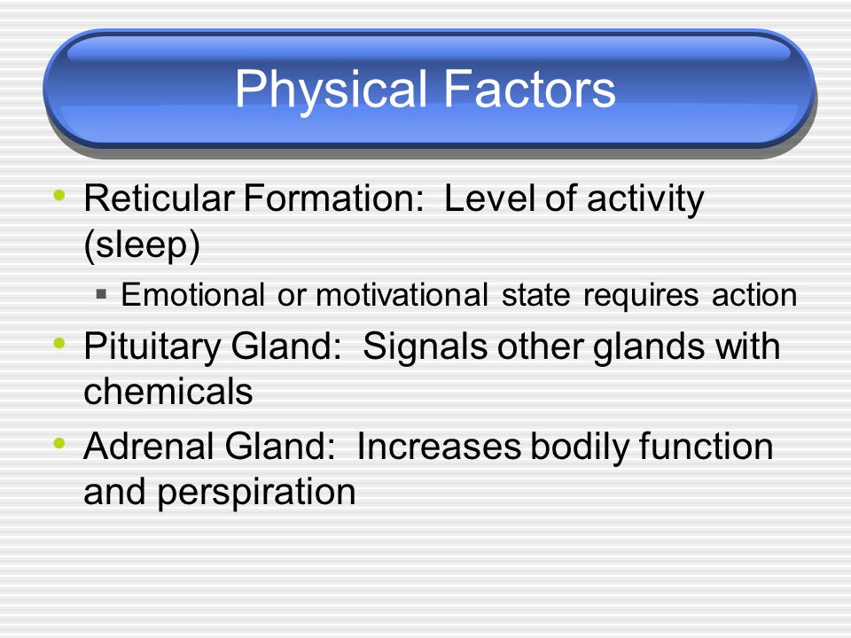 Physical Factors Reticular Formation: Level of activity (sleep)  Emotional or motivational state requires action Pituitary Gland: Signals other glands with chemicals Adrenal Gland: Increases bodily function and perspiration