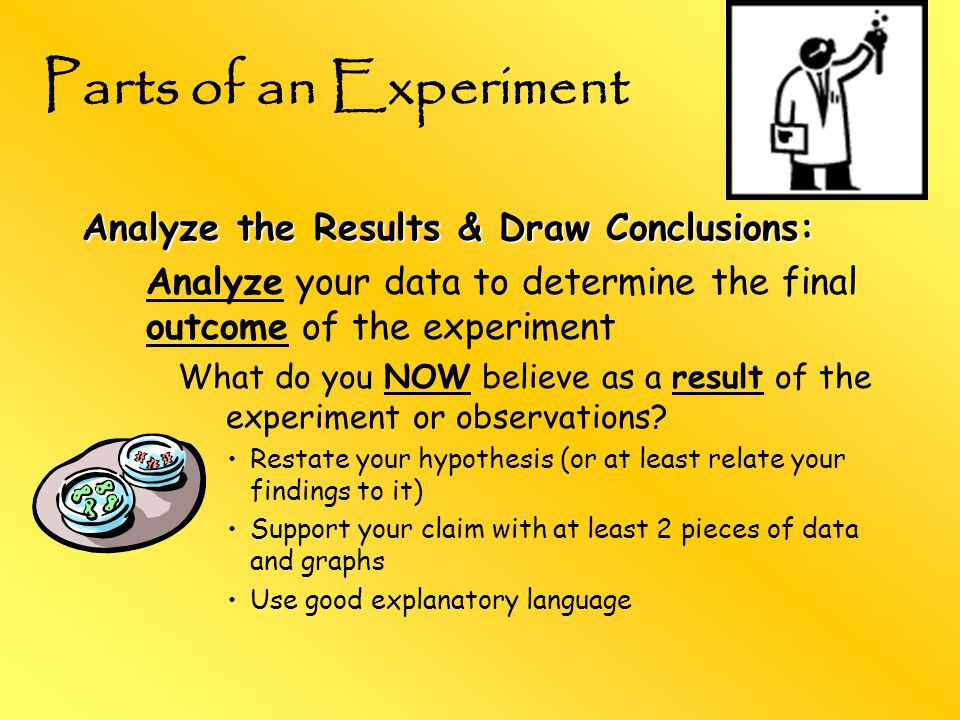 Analyze the Results & Draw Conclusions: Analyze your data to determine the final outcome of the experiment What do you NOW believe as a result of the experiment or observations.