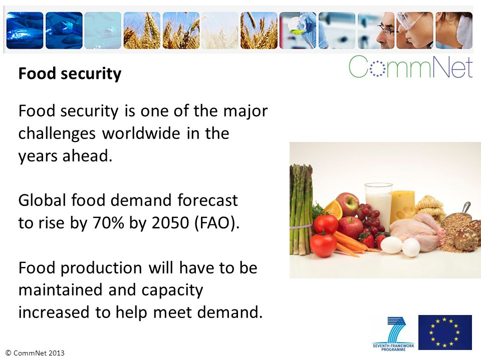 © CommNet 2013 Food security is one of the major challenges worldwide in the years ahead.