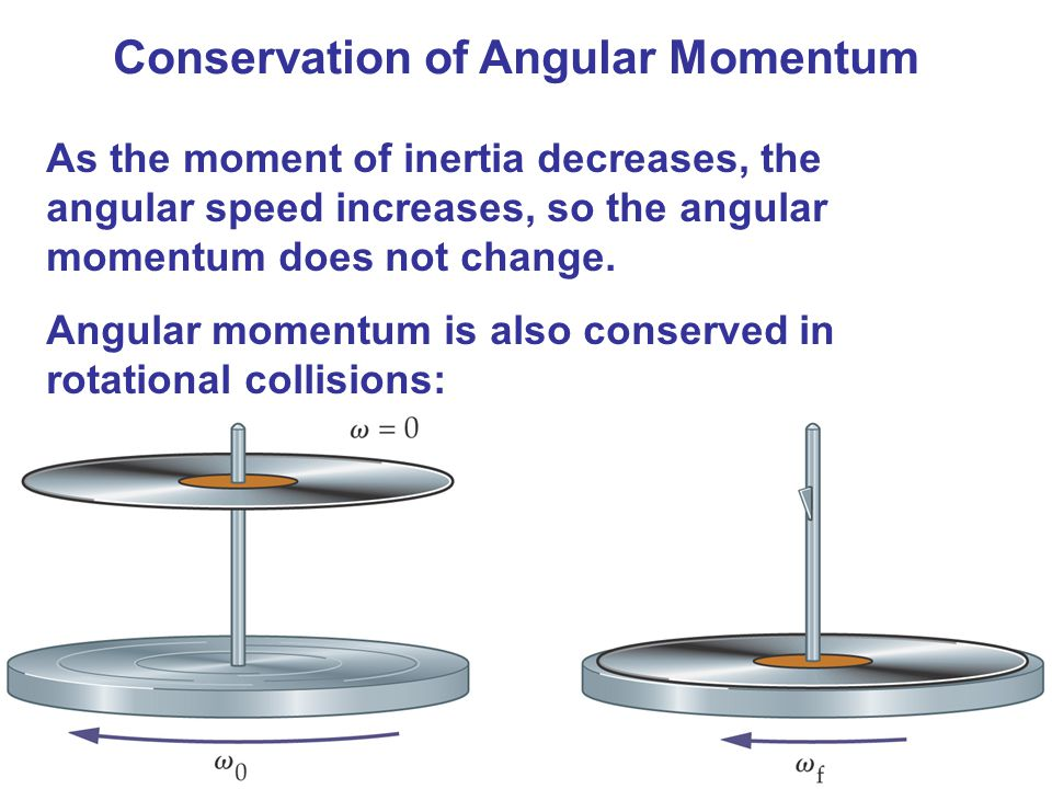Conservation of Angular Momentum As the moment of inertia decreases, the angular speed increases, so the angular momentum does not change.