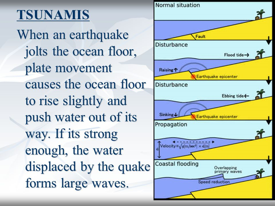 TSUNAMIS When an earthquake jolts the ocean floor, plate movement causes the ocean floor to rise slightly and push water out of its way.