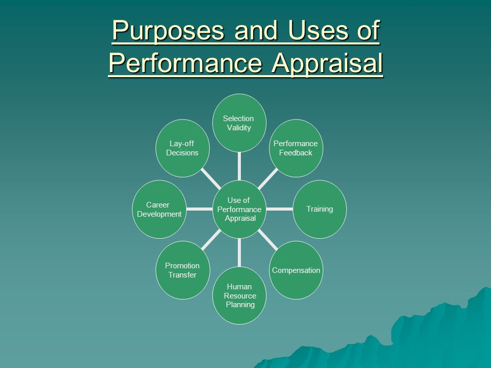 Purposes and Uses of Performance Appraisal Use of Performance Appraisal Selection Validity Performance Feedback TrainingCompensation Human Resource Planning Promotion Transfer Career Development Lay-off Decisions