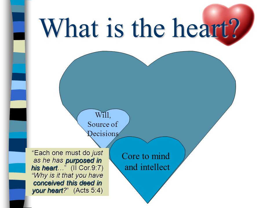 Core to mind and intellect Will, Source of Decisions Each one must do just as he has purposed in his heart… (II Cor.9:7) Why is it that you have conceived this deed in your heart (Acts 5:4) What is the heart