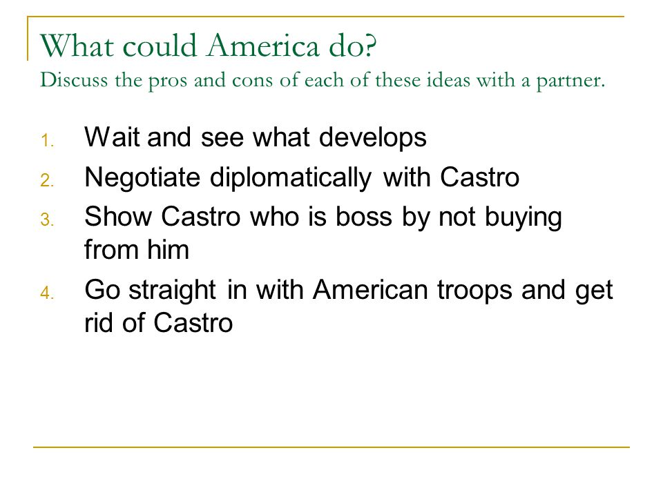 What could America do. Discuss the pros and cons of each of these ideas with a partner.