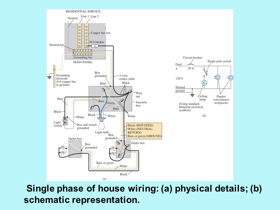 Single phase of house wiring: (a) physical details; (b) schematic representation.