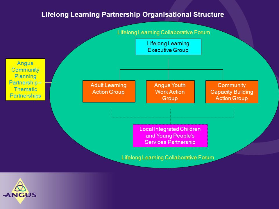 Lifelong Learning Partnership Organisational Structure Lifelong Learning Executive Group Adult Learning Action Group Angus Youth Work Action Group Community Capacity Building Action Group Local Integrated Children and Young People's Services Partnership Lifelong Learning Collaborative Forum Angus Community Planning Partnership – Thematic Partnerships