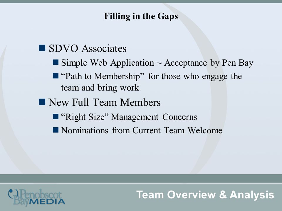 Filling in the Gaps Team Overview & Analysis SDVO Associates Simple Web Application ~ Acceptance by Pen Bay Path to Membership for those who engage the team and bring work New Full Team Members Right Size Management Concerns Nominations from Current Team Welcome