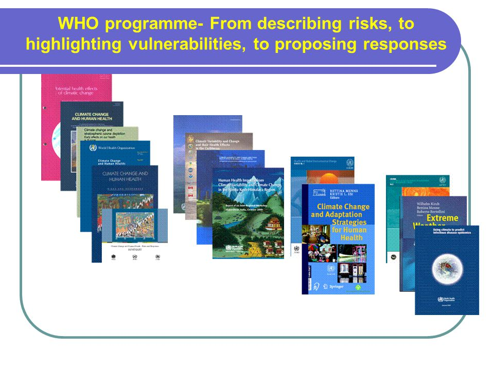 WHO programme- From describing risks, to highlighting vulnerabilities, to proposing responses