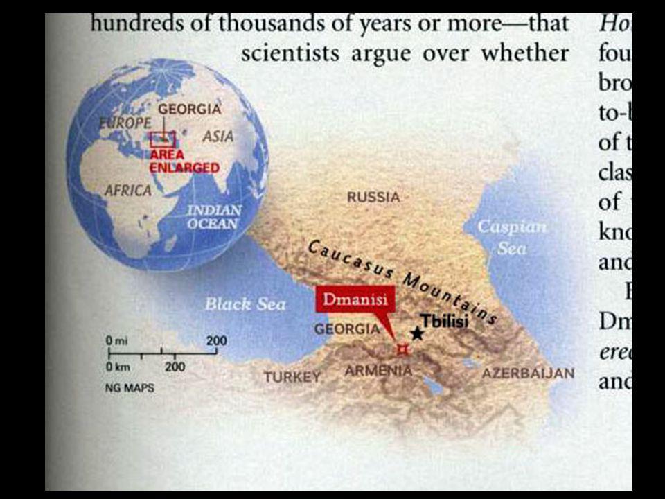 Dmanisi Georgia Map.Hominid Evolution Ppt Video Online Download