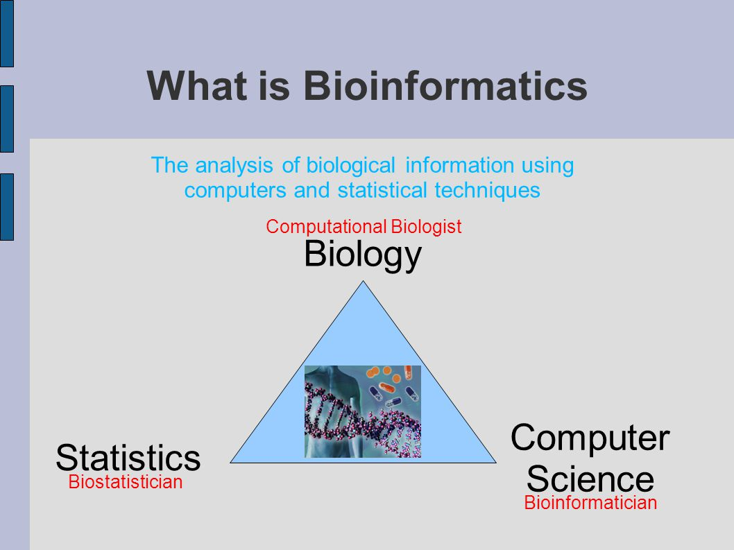 What is Bioinformatics Computational Biologist Bioinformatician Biostatistician Biology Computer Science Statistics The analysis of biological information using computers and statistical techniques