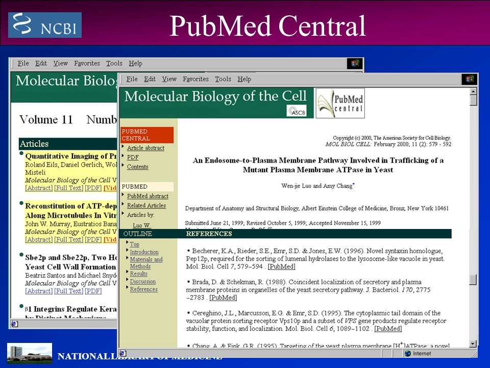 NATIONAL LIBRARY OF MEDICINE PubMed Central