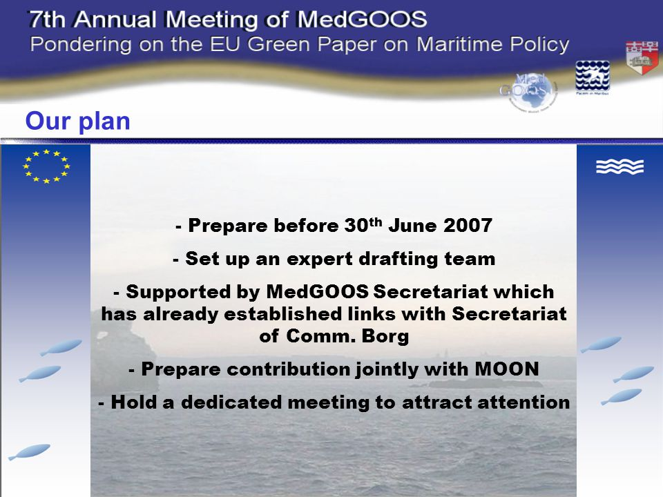 - Prepare before 30 th June Set up an expert drafting team - Supported by MedGOOS Secretariat which has already established links with Secretariat of Comm.