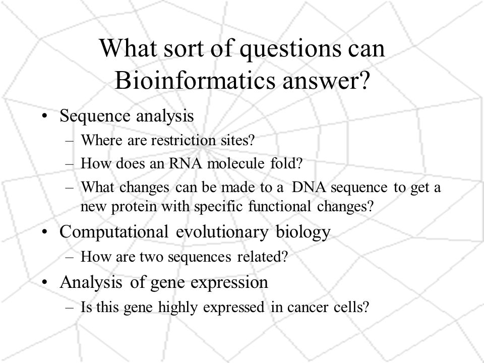 What sort of questions can Bioinformatics answer. Sequence analysis –Where are restriction sites.