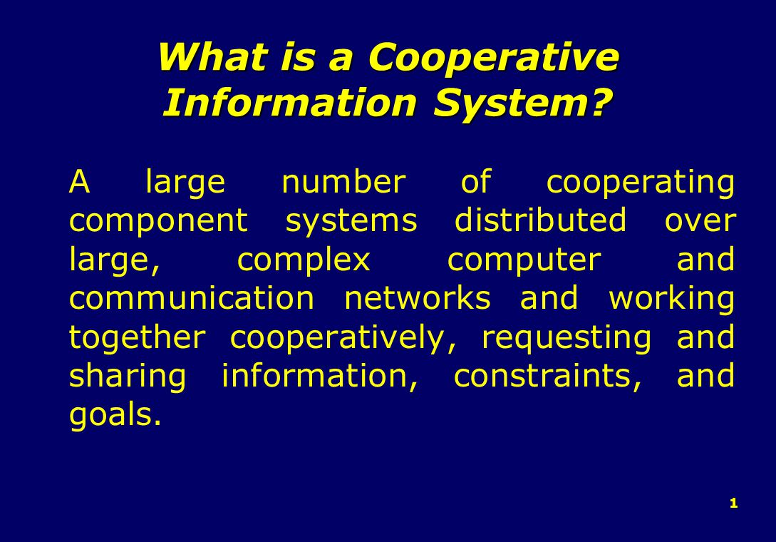 1 What is a Cooperative Information System.