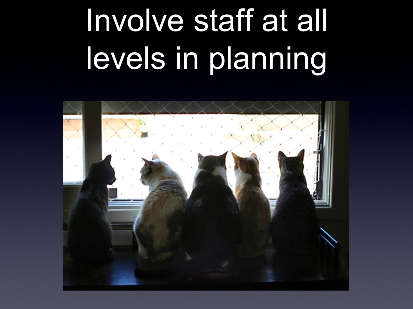 Involve staff at all levels in planning