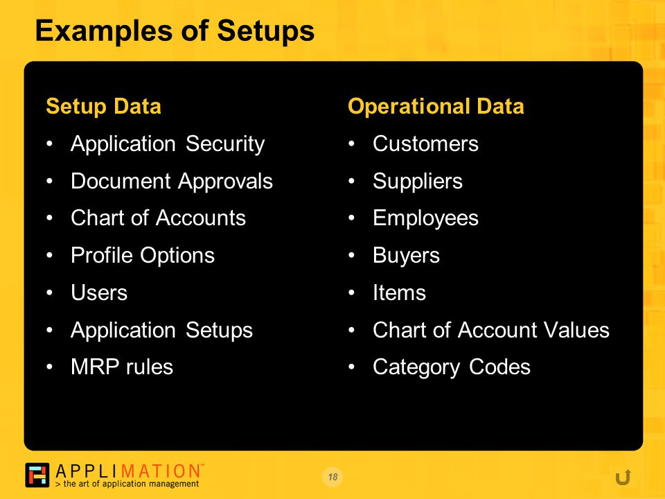 18 Examples of Setups Setup Data Application Security Document Approvals Chart of Accounts Profile Options Users Application Setups MRP rules Operational Data Customers Suppliers Employees Buyers Items Chart of Account Values Category Codes