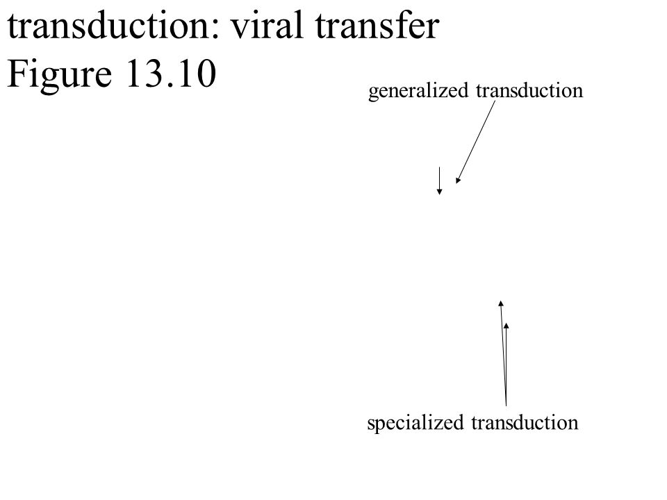 transduction: viral transfer Figure generalized transduction specialized transduction