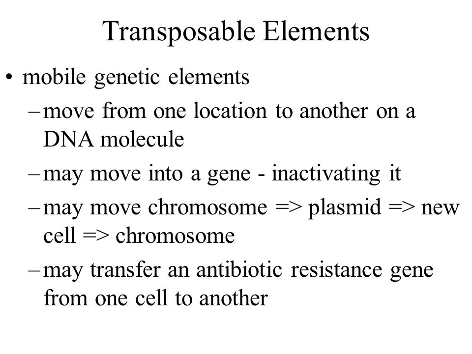 Transposable Elements mobile genetic elements –move from one location to another on a DNA molecule –may move into a gene - inactivating it –may move chromosome => plasmid => new cell => chromosome –may transfer an antibiotic resistance gene from one cell to another