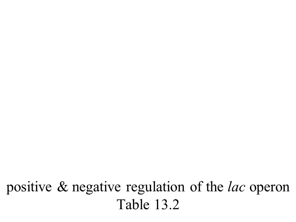 positive & negative regulation of the lac operon Table 13.2