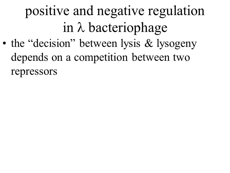 positive and negative regulation in bacteriophage the decision between lysis & lysogeny depends on a competition between two repressors