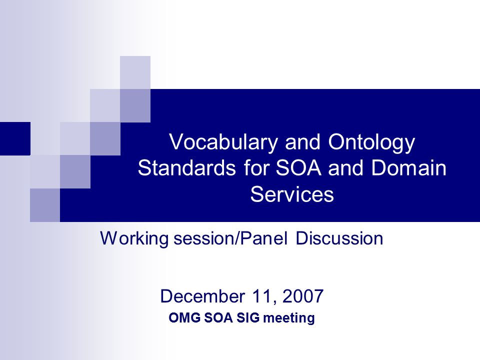 Vocabulary and Ontology Standards for SOA and Domain Services Working session/Panel Discussion December 11, 2007 OMG SOA SIG meeting