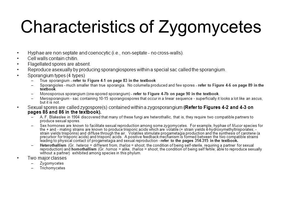 Kingdoms fungus phyla zygomycota asexual reproduction