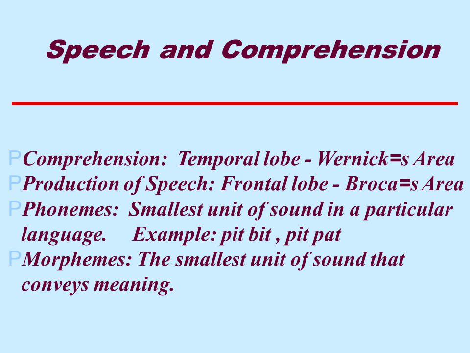  Comprehension: Temporal lobe - Wernick = s Area  Production of Speech: Frontal lobe - Broca = s Area PPhonemes: Smallest unit of sound in a particular language.