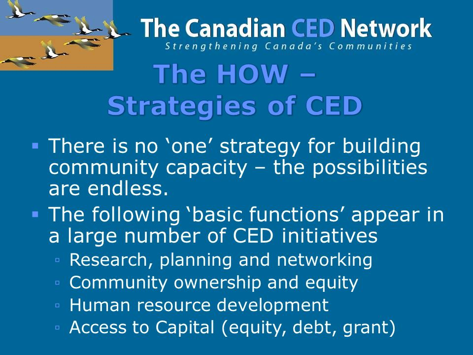  There is no 'one' strategy for building community capacity – the possibilities are endless.