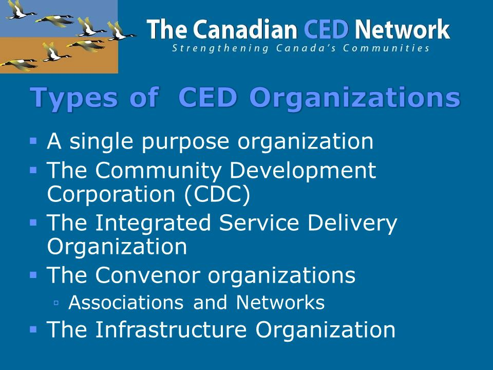  A single purpose organization  The Community Development Corporation (CDC)  The Integrated Service Delivery Organization  The Convenor organizations ▫Associations and Networks  The Infrastructure Organization