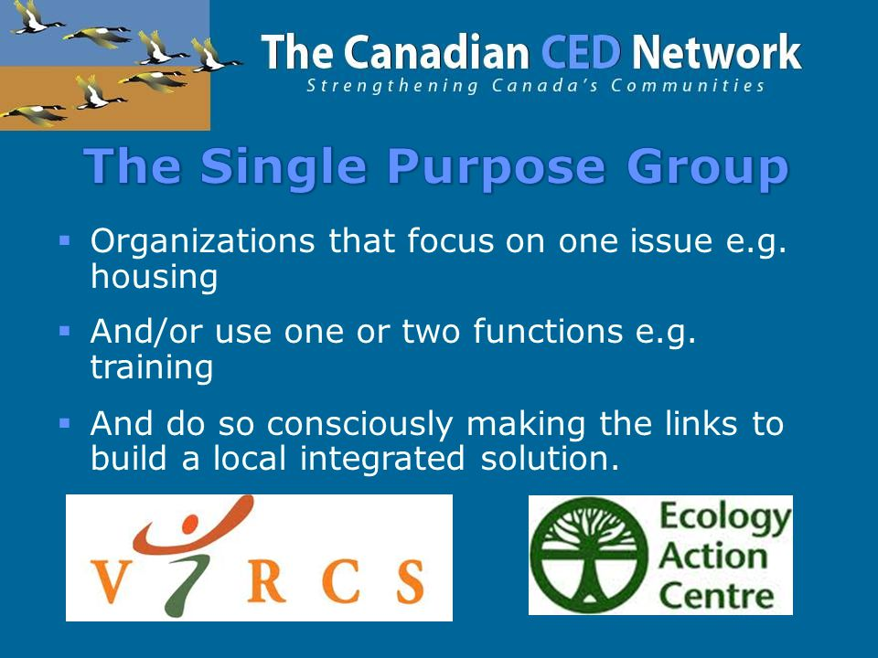  Organizations that focus on one issue e.g. housing  And/or use one or two functions e.g.