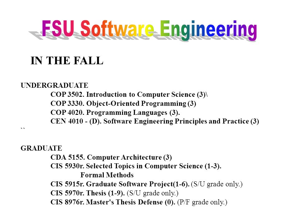 TOPIC A Practitioners view of Software Engineering