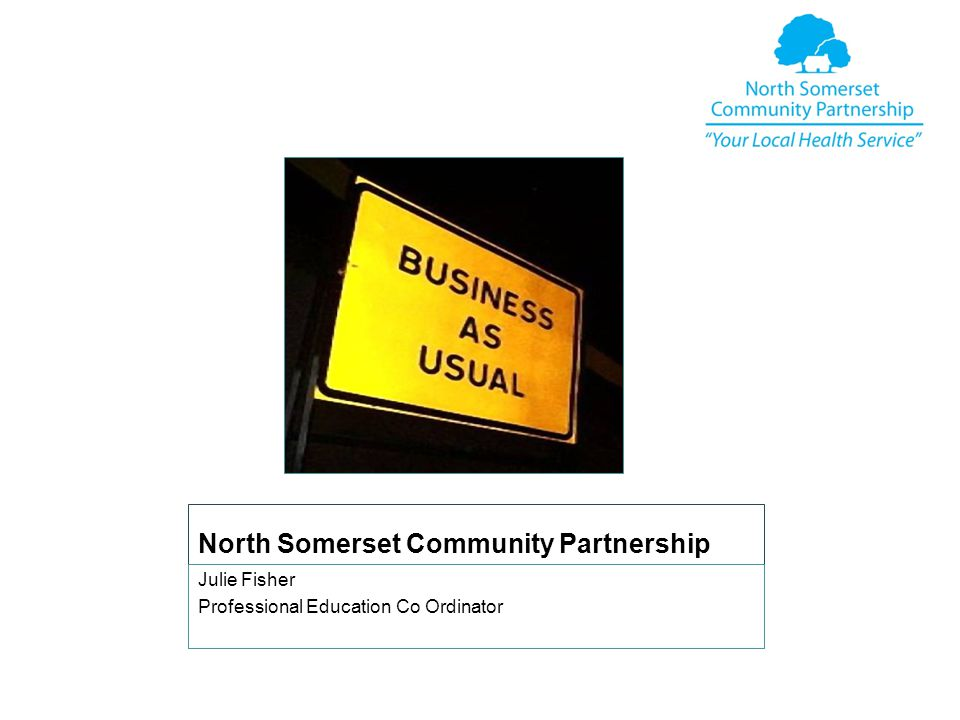 North Somerset Community Partnership Julie Fisher Professional Education Co Ordinator