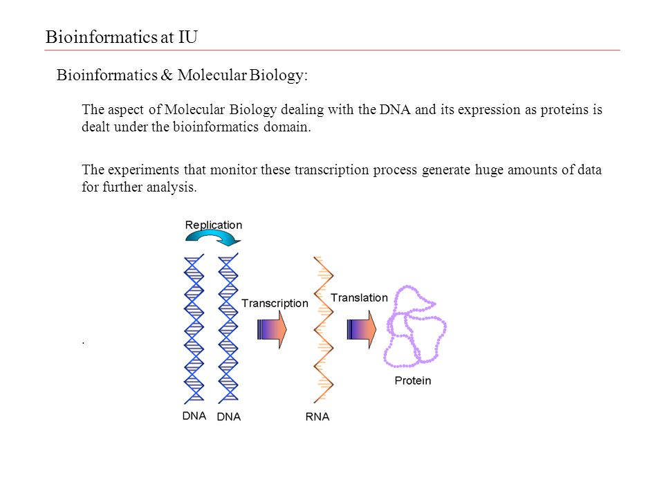 Bioinformatics & Molecular Biology: The aspect of Molecular Biology dealing with the DNA and its expression as proteins is dealt under the bioinformatics domain.