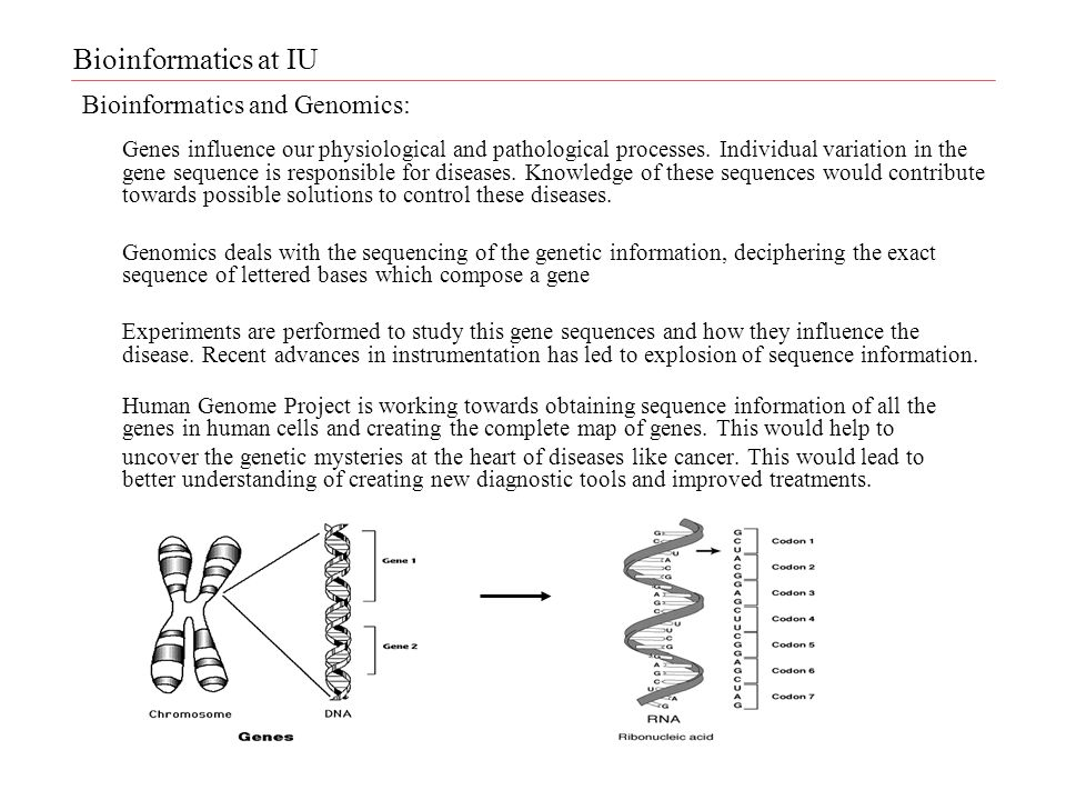 Bioinformatics and Genomics: Genes influence our physiological and pathological processes.