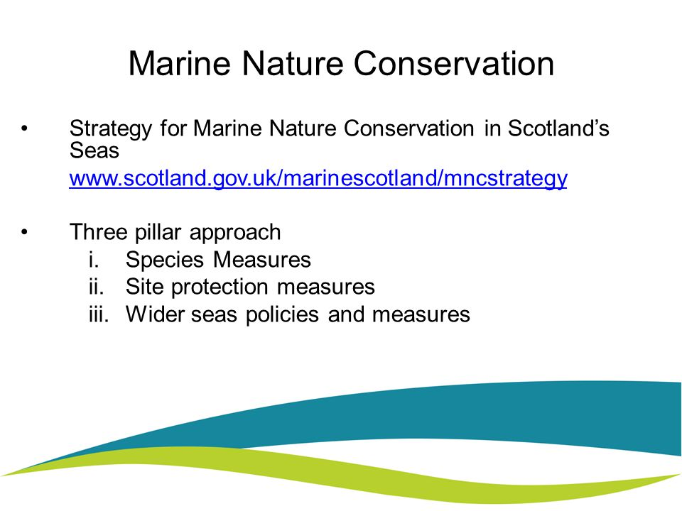 Marine Nature Conservation Strategy for Marine Nature Conservation in Scotland's Seas   Three pillar approach i.Species Measures ii.Site protection measures iii.Wider seas policies and measures