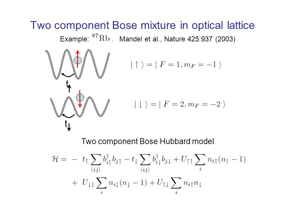 t t Two component Bose mixture in optical lattice Example:.