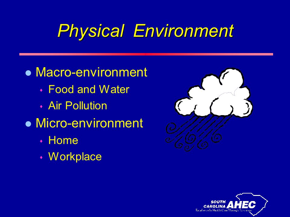 Physical Environment l Macro-environment s Food and Water s Air Pollution l Micro-environment s Home s Workplace