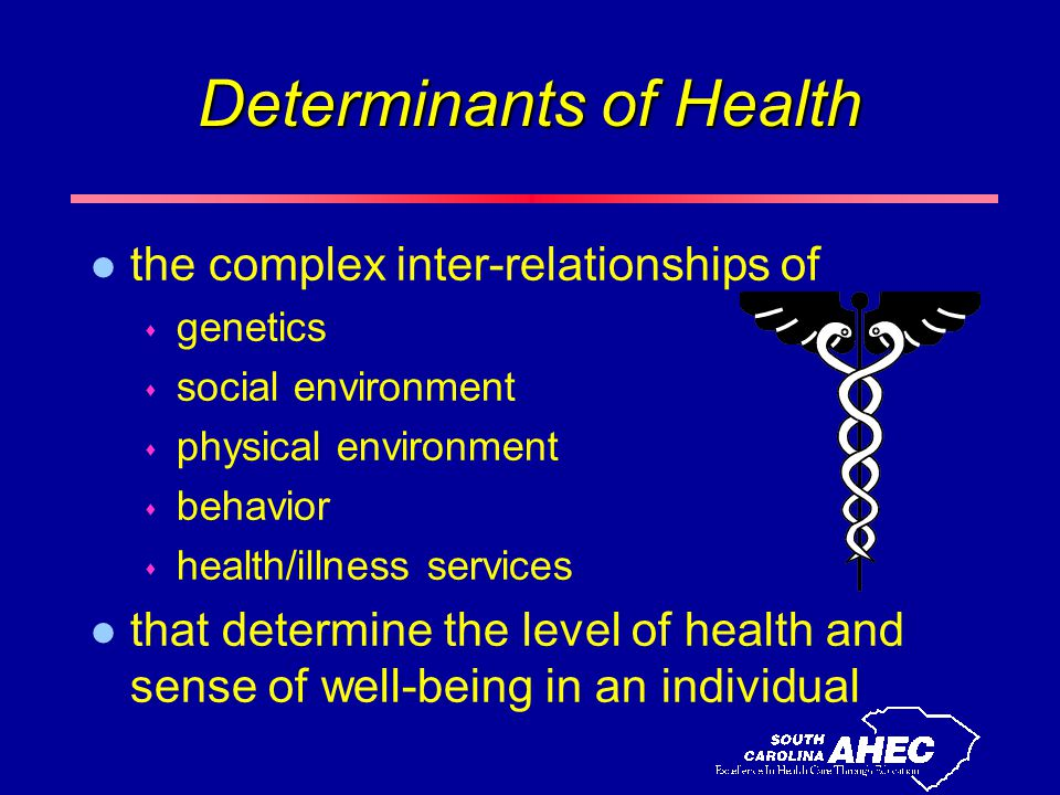 Determinants of Health l the complex inter-relationships of s genetics s social environment s physical environment s behavior s health/illness services l that determine the level of health and sense of well-being in an individual