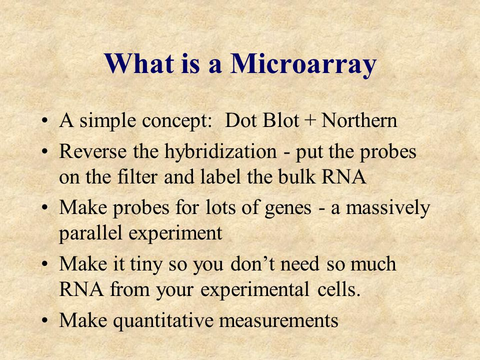 What is a Microarray A simple concept: Dot Blot + Northern Reverse the hybridization - put the probes on the filter and label the bulk RNA Make probes for lots of genes - a massively parallel experiment Make it tiny so you don't need so much RNA from your experimental cells.