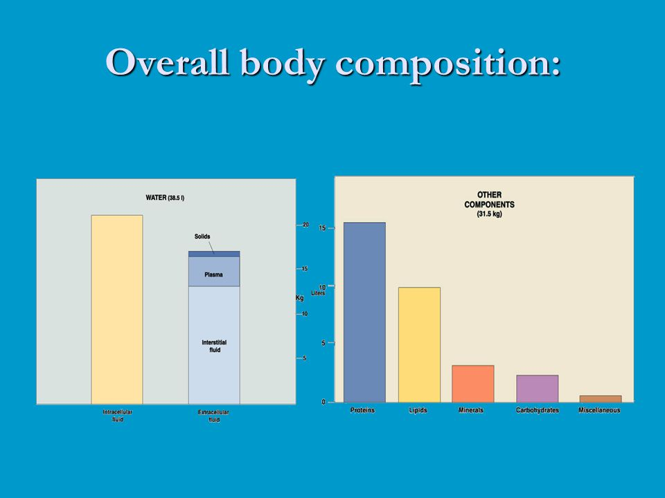 Overall body composition: