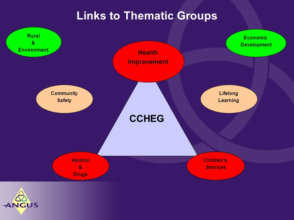 Links to Thematic Groups CCHEG ADPCSEG CCHEG CSEG CCHEG Alcohol & Drugs Children's Services Lifelong Learning Community Safety Economic Development Rural & Environment Health Improvement