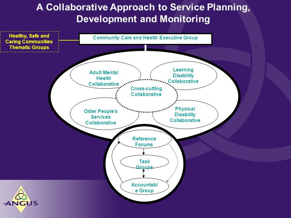 A Collaborative Approach to Service Planning, Development and Monitoring Healthy, Safe and Caring Communities Thematic Groups Community Care and Health Executive Group Adult Mental Health Collaborative Learning Disability Collaborative Older People's Services Collaborative Physical Disability Collaborative Cross-cutting Collaborative Reference Forums Task Groups Accountabl e Group