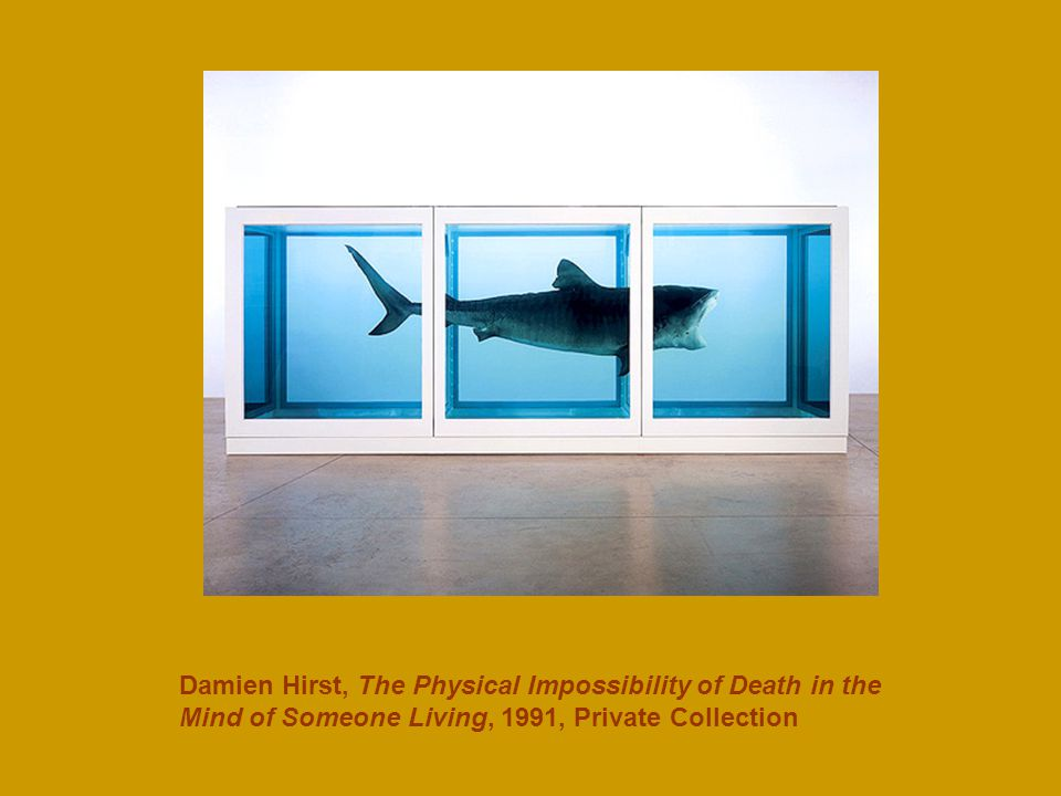 Damien Hirst, The Physical Impossibility of Death in the Mind of Someone Living, 1991, Private Collection
